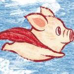 猪会飞,何须风口?